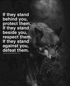 If They stand  behind you protect them... If they stand beside you respect them... If they stand againts you defeat them...