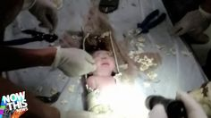 Newborn baby found alive in sewer pipe in China - Residents of an apartment building in the city of Jinhua heard the sound of an infant crying and after rescuers cut open the drain the child was rushed to hospital. Tiffany White, 22 Years Old, Video News, News Stories, Mom And Baby, Crying, Infant, City, Children