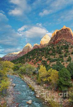 ✯ Virgin River - Zion National Park - Utah