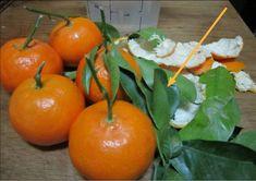 Fantástico! Benefícios e usos da chá de folhas de laranjeira - # #chácaseiro #remédiocaseiro #remédionatural