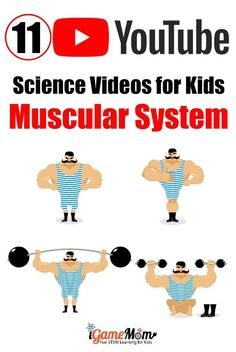 Muscular System Muscles For Kids Muskeln Für Kinder - Lynne Seawell's World Science Videos For Kids, Science Activities For Kids, Teaching Science, Science For Kids, Teaching Kids, Science Websites, Elementary Science, Creative Teaching, Muscular System For Kids