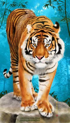 I finished this speed-painting last month. It& the Year of the Tiger according to the Chinese zodiac, so it seems like an appropriate theme. The Sumatran tiger is only found naturally in Sumatra, . Tiger Wallpaper, Animal Wallpaper, Big Cats Art, Cat Art, Animal Paintings, Animal Drawings, Beautiful Cats, Animals Beautiful, Tiger Pictures
