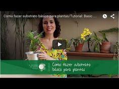 Nô Figueiredo Ensina Como Fazer Substrato Básico para Plantas (tutorial)