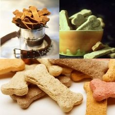 Colorful dog treats