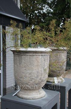 Afbeeldingsresultaat voor potten tuin, il cupido