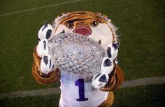 24 Best LSU images | Lsu tigers baseball, Louisiana
