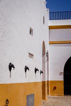 Rincones de Andalucía: Plaza de Toros de la Maestranza (Sevilla) / Places of Andalusia: Plaza de Toros de la Maestranza (Sevilla), by @boldblissblog