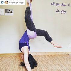 Fantastic photo, Samantha @skeorasmey! ・・・ #Repost Morning workout :) #yogaeverydamnday #yourwingsalreadyexist #yourspineisjealous #antigravityyoga #antigravityfitness #antigravity #aerialyoga #aerialhammock #aerial #yoga #flyingfitness #fitness #agy #yogi #practiceandalliscoming #om #inverteverydamnday #inversionjunkie #inversion #instafit #fitlife #nyack #rocklandcounty #lohud #hudsonvalley #newyork #soulflyte