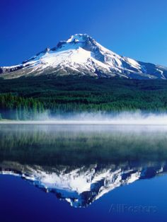 Trilium Lake with Mt. Hood in Background, Mt. Hood, Oregon Photographic Print by John Elk III at AllPosters.com