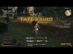 """FFXIV Developers' Commentary """"Full Active Time Event"""""""