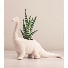 Dinosaure Plantosarus