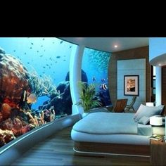 This Doesnt Fit Into The Theme Of My Dream Home But Ive Always Wanted A LARGE Fish Tank In House THIS Is Amazing