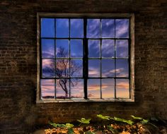 Photo windowscape by Todd Wall on 500px