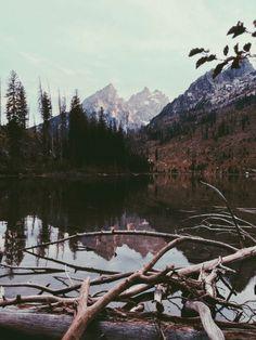 |Teton View|