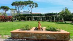 Modern, well presented villa with large private plot mainly laid out as a formal established garden with ar-eas for all day shade and a separate entertaining rotunda sqm / 538 ft) with wood fired stove. Dream Properties, Lucca, Tuscany, Coast, Anna, Fire, Villas, Separate, Stove