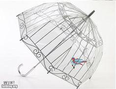 umbrella for the caged bird?