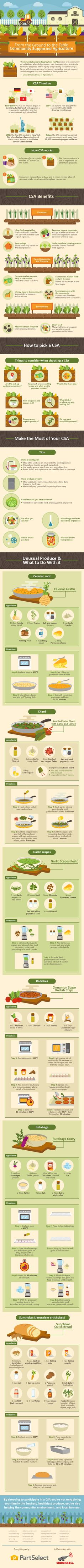 From the Ground to the Table: Community Supported Agriculture #Infographic #Agriculture