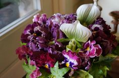orchid,tulip and pansy