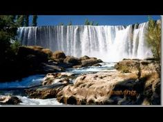 I Honestly Love You by Olivia Newton John (lyrics) - YouTube