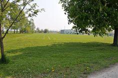 Sportplatz, Blick zur Turnhalle