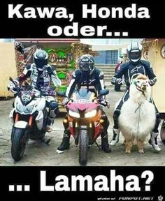 Really funny Kawa or Honda who will win? Just to laugh - Kawa, Honda … I think they are much more advanced in India than the new Lamaha hier here -