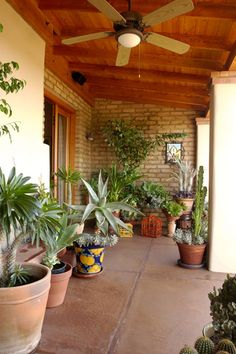 Southwestern Patio Design Google Search