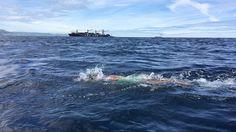 Von Spanien nach Afrika geschwommen: 21-jährige Deutsche stellt Weltrekord auf