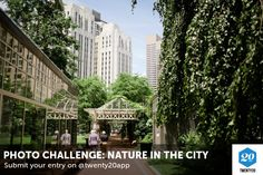 The Twenty20 Nature in the City challenge is open. Submit your entry now.