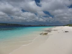 Bonaire.  We will definitely be spending an anniversary there sometime in the next couple years!