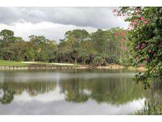Gorgeous lake, preserve and golf course shot in Grey Oaks, Naples, FL #naplesgolf #floridagolfcourses #privatecourses Visit www.swflhomesandland.com for golf course homes.