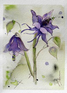 Columbine Watercolor Painting Original