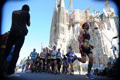 16/03/ 2014 Maraton de Barcelona 2014 Joan Lanuza