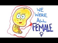 WE ARE ALL FEMALE!!! :D ( Credit to AsapScience)