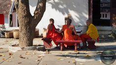 Bon appétit  D'autres photos sur  #followme #thierrydollon #photodujour #Laos #instatravel #photocouleur #voyage #picoftheday #travel #voyage #friends #evasion #decouvertes #landscapes #paysage #explorer #aventure #traveler #neverstopexploring #travelawesome #natureaddict #awesomeearth #exploretocreate #beautifulplaces #bestplacetogo #wanderlust #outplanetdaily