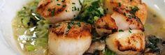 Recept voor coquilles: een lekker voorgerecht met coquilles