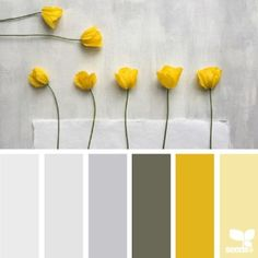 today's inspiration image for { poppy yellow } is by the talented @c_colli ... thank you Cristina for another incredibly inspiring #SeedsColor image share!