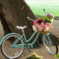 aa15852db9db8 Won t somebody get me this beautiful vintage style bicycle. always wanted a  mint coloured bike with a basket full of flowers! The dream.