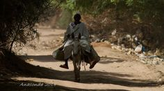 https://flic.kr/p/nMrALX | IMG_0908 | Tuti Island, Khartoum, Sudan