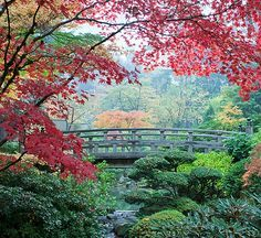 Set several hundred feet above Portland in the 5,000-acre Forest Park that surrounds the city, the Portland Japanese Garden is one of the most authentic Japanese gardens outside of, well, Japan.