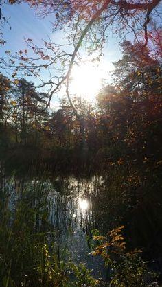 Autumn/herfst An Hemel inspiratie