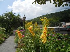 The Bridge of Flowers   http://hubpages.com/travel/the-bridge-of-flowers-shelburne-falls-massachusetts