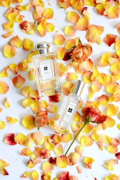 Obsessing Over... My Favorite Jo Malone Combinations - Sed Bona