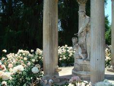 The Huntington Library, San Marino, California / Gardens of all varieties (Shakespeare/rose garden shown here).