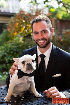Boston Wedding Photography, Boston Event Photography, Wedding with Dogs, Pets in Wedding, Dog in Bowtie Wedding, Cute Puppy Wedding, Weddings with Pets, Wedding Photos with Dog