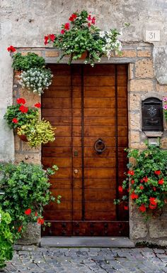 Doorway in Orvieto, Terni, Italia ~ love the mail slot! Door Entryway, Entrance Doors, Doorway, Garage Doors, House Doors, Cool Doors, Unique Doors, Beautiful Front Doors, Farmhouse Front