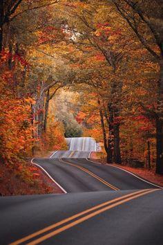 "Legendary Scholar — j-k-i-ng:""Untitled"" by | Ryan Resatka Fall Photos, Nature Photos, Fall Pics, Autumn Scenery, Autumn Photography, Canon Photography, Amazing Photography, Travel Photography, New Hampshire"