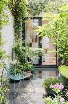 kleine tuin binnenplaats klimop begroeiing planten - The Silver Garden Small Jungle Garden Ideas, Small City Garden, Small Balcony Garden, Small Courtyard Gardens, Small Courtyards, Small Space Gardening, Small Patio, Small Gardens, Outdoor Gardens