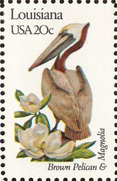 Louisiana state bird and flower