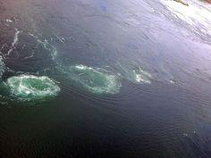 whirlpool scandinavian maelsrom    World`s strongest whirlpool Maelstrom (Saltstraumen) in Bodø Norway ...