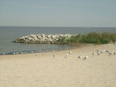 1) Maumee Bay State Park Beach (Oregon, OH  8 best beaches in Ohio